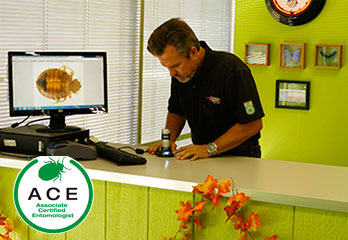 Ron Dawson ACE Certified Entomologist