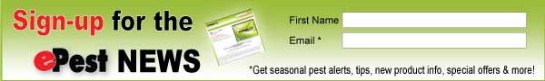 epest newsletter signup