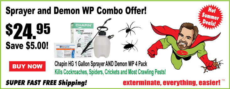 Demon WP Special Offer