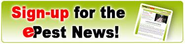 epest newsletter