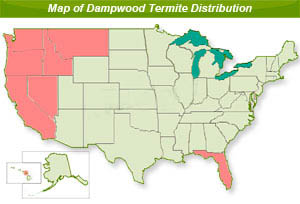 us map of dampwood termite