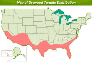 drywood termite distribution map