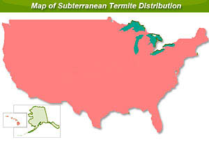 us map of subterranean termite